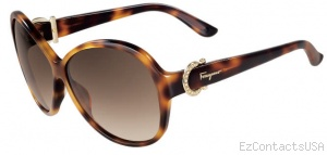 Salvatore Ferragamo SF611SR Sunglasses - Salvatore Ferragamo