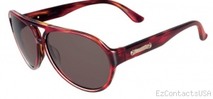 Salvatore Ferragamo SF619S Sunglasses  - Salvatore Ferragamo