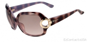Salvatore Ferragamo SF621S Sunglasses - Salvatore Ferragamo
