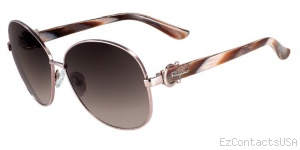 Salvatore Ferragamo SF101S Sunglasses - Salvatore Ferragamo