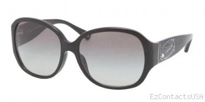 Coach HC8037BF Sunglasses - Coach