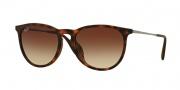 Ray Ban RB4171F Erika Sunglasses