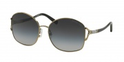 Michael Kors MK1004B Sunglasses Palm Beach