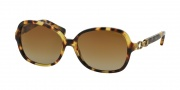 Coach HC8123 Sunglasses Cole