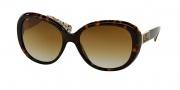 Coach HC8120 Sunglasses Carter