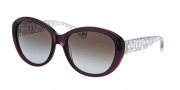 Coach HC8106 Sunglasses Asha