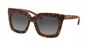 Michael Kors MK2013 Sunglasses Polynesia