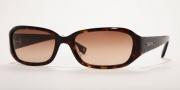 Anne Klein/AK 3140 Sunglasses - (202-37) Tortoise