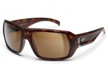 Smith Vanguard Sunglasses - Matte Tortoise Evolve / Polar Brown