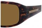 Carrera Control Sunglasses Sunglasses - ETAP Tortoise / VW Brown Polarized Lens