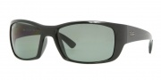 Ray-Ban RB4149 Sunglasses Sunglasses - (601/58) Black / Crystal Green Polarized