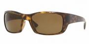 Ray-Ban RB4149 Sunglasses Sunglasses - 710/57 Light Havana / Crystal Brown Polarized