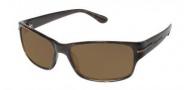 Tommy Bahama TB 535sp Sunglassses Sunglasses - Tortoise