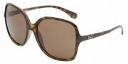 D&G DD8082 Sunglasses Sunglasses - 502/73 Havana / Brown