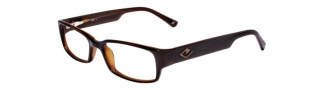 JOE Eyeglasses JOE4008  Eyeglasses - Walnut