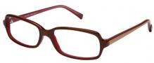Modo 5014 Eyeglasses Eyeglasses - Black Horn