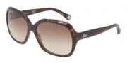 D&G DD3077 Sunglasses Sunglasses - 502/13 Havana / Brown Gradient