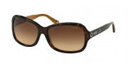 Coach HC8016 Sunglasses Ciara Sunglasses - 503313 Dark Tortoise