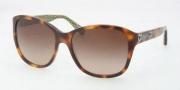 Coach HC8017 Sunglasses Kendall Sunglasses - 503113 Tortoise / Brown Gradient