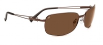 Serengeti Trieste Sunglasses Sunglasses - 7673 Espresso / Drivers