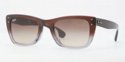 Ray-Ban RB4148F Sunglasses Sunglasses - 108013 Brown Top Transparent Gray / Brown Gradient