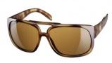 Adidas Toronto Sunglasses Sunglasses - 6052 Demiblond Havana