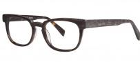 OGI Eyewear 3112 Eyeglasses Eyeglasses - 1357 Dark Tortoise