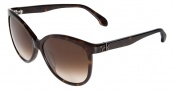CK by Calvin Klein 4183S Sunglasses Sunglasses - 004 Havana