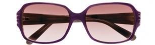 BCBGMaxazria Dazzle Sunglasses Sunglasses - PLU Plum