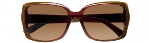 BCBGMaxazria Flirt Sunglasses  Sunglasses - BRO Brown Fade
