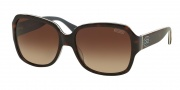 Coach HC8043 Sunglasses Bridget Sunglasses - 508913 Dark Tortoise Grey