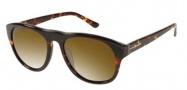 Gant GS Maxwell Sunglasses Sunglasses - AMBTO1P: Amber Tortoise