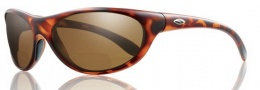 Smith Optics Fly By Sunglasses Sunglasses - Tortoise / +2.00 Polarized Brown