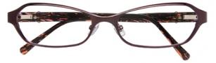 Cole Haan CH947 Eyeglasses Eyeglasses - Purple