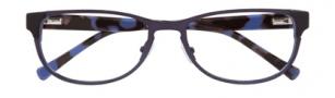 Cole Haan CH1010 Eyeglasses Eyeglasses - Ink