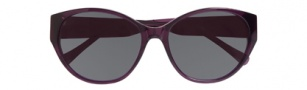 Cole Haan CH616 Sunglasses Sunglasses - Eggplant