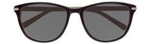 Cole Haan CH618 Sunglasses Sunglasses - Black Laminate