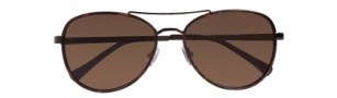 Cole Haan CH690 Sunglasses Sunglasses - Black Tortoise