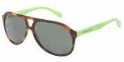 Dolce & Gabbana DG4169 Sunglasses Sunglasses - 268771 Top Havana on Green / Green Lens