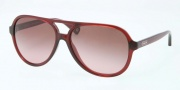 Coach HC8073 Sunglasses Daisy Sunglasses - 502914 Burgundy / Brown Rose Gradient