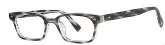Seraphin Emerson Eyeglasses Eyeglasses - 8566 Gray Demi
