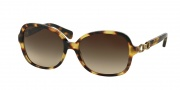 Coach HC8123 Sunglasses Cole Sunglasses - 517513 Tokyo Tortoise / Khaki Gradient