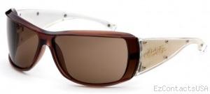 Black Flys Sunglasses Fly Trap  - Black Flys