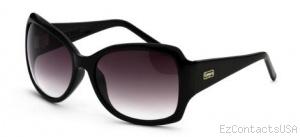 Black Flys Fly Holiday Sunglasses  - Black Flys