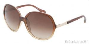D&G DD8089 Sunglasses - D&G