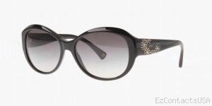 Coach HC8010B Sunglasses Payton - Coach