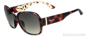 Salvatore Ferragamo SF603S Sunglasses - Salvatore Ferragamo