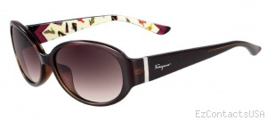 Salvatore Ferragamo SF605S Sunglasses - Salvatore Ferragamo