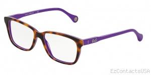D&G DD1238 Eyeglasses - D&G