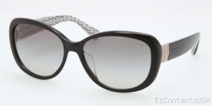 Coach HC8040BF Sunglasses - Coach